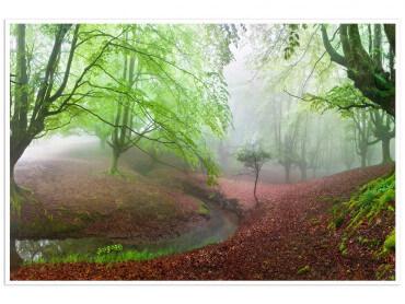 Affiche paysage Renaissance verte