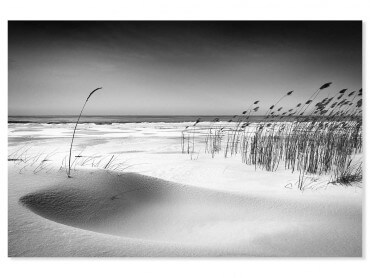 Tableau paysage on the beach