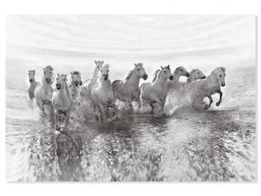 Tableau animaux camarguais au galop