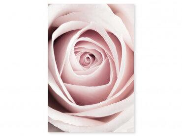 Tableau fleurs coeur de roses