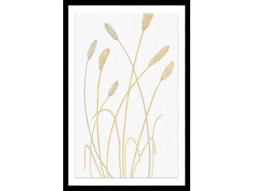 Affiche fleurs scandi blés 2