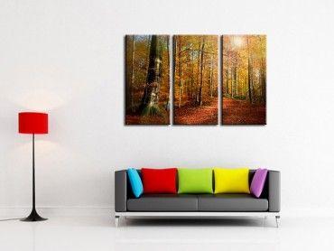 Tableau photo paysage de foret au couleurs d'automne