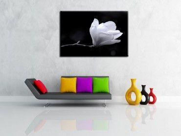 Tableau mural fleur de magnolia