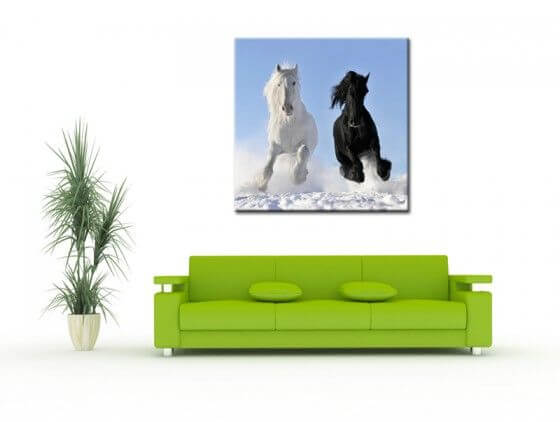 tableau photo chevaux vente en ligne de tableaux deco design. Black Bedroom Furniture Sets. Home Design Ideas