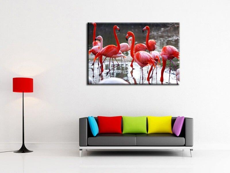 tableau deco photo flamants roses d coration murale animaux. Black Bedroom Furniture Sets. Home Design Ideas