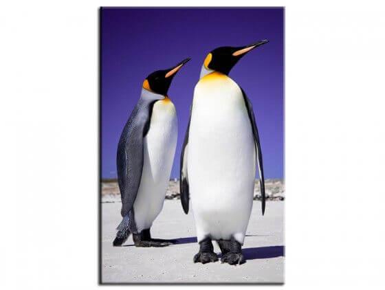 Tableau deco pingouins
