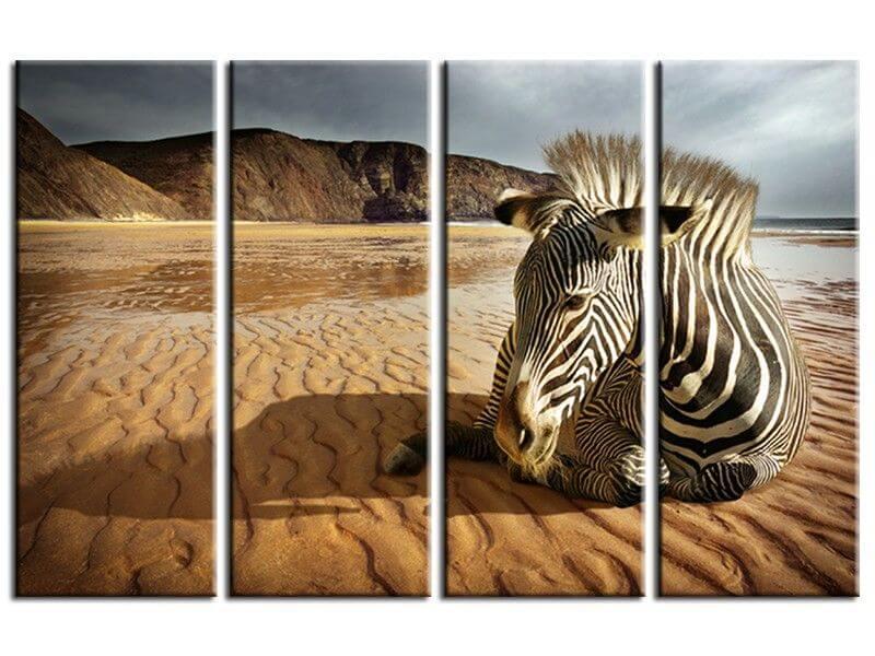 tableau d coration murale animaux petits prix sur hexoa. Black Bedroom Furniture Sets. Home Design Ideas
