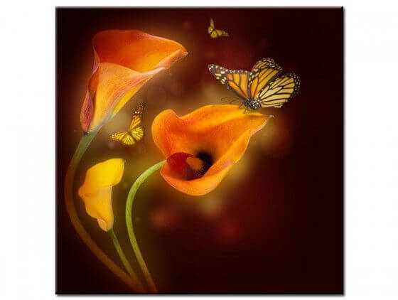 Tableau design papillon et fleurs