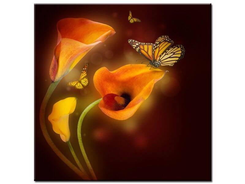 Tableau design papillon achat de tableaux deco pas chers for Fleurs envoyer pas cher
