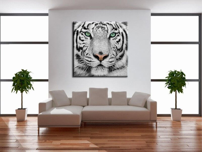 tableau moderne tigre de sumatra d coration murale animaux. Black Bedroom Furniture Sets. Home Design Ideas
