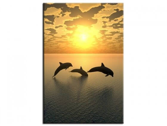 Tableau décoratif dauphins