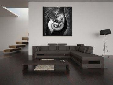 Tableau photo décoration éléphant