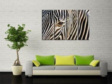 tableau photo animaux tableau deco design hexoa. Black Bedroom Furniture Sets. Home Design Ideas