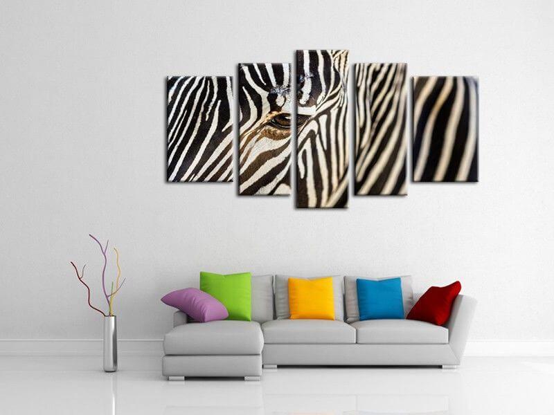 tableau en toile plexi ou alu z bre tableaux animaux hexoa. Black Bedroom Furniture Sets. Home Design Ideas