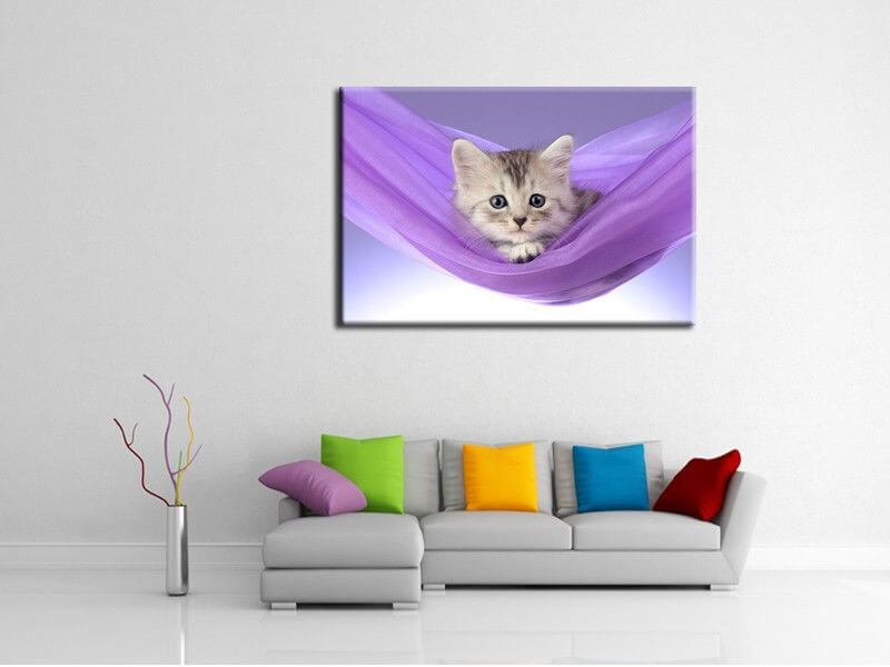 tableau animaux chat pas cher d coration murale design hexoa. Black Bedroom Furniture Sets. Home Design Ideas