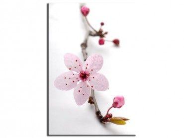Tableau moderne fleurs prunus