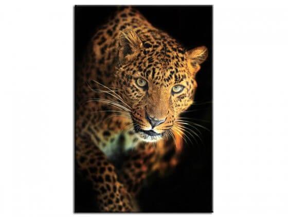 Tableau design le léopard