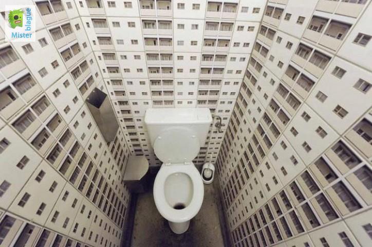 Idées déco - tableau pour des toilettes originales - Le Blog Hexoa